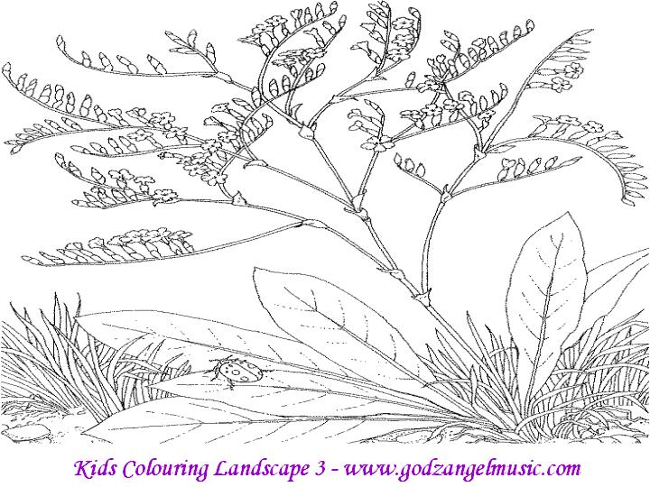 Download Free Coloring Pages To Print Of Beautiful Nature
